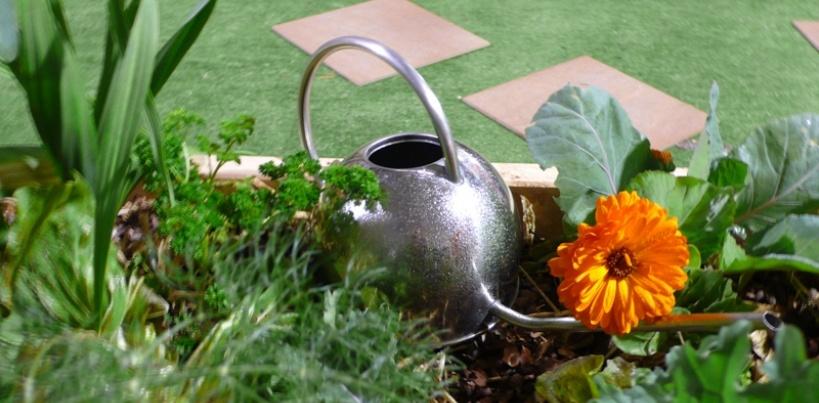 Wellington Home Garden Show Home and Garden Shows